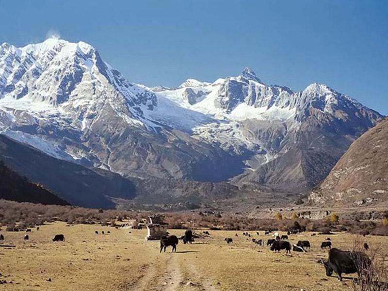 Round Manaslu with Barpak - Laprak